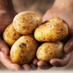 potatoes and weight loss