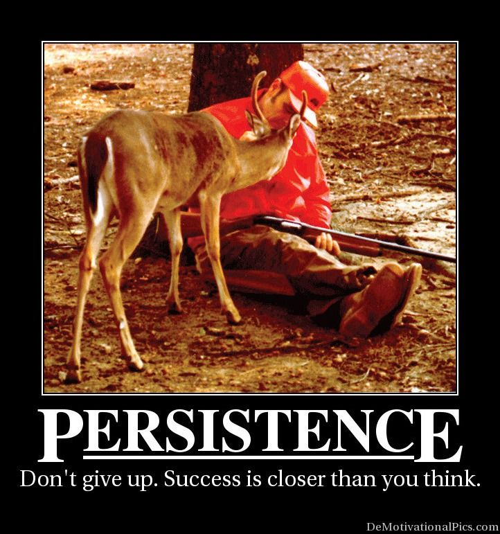 Persistence Motivational Quotes: Persistence Is Better Than Perfection