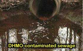 DHMO-contaminated sewage