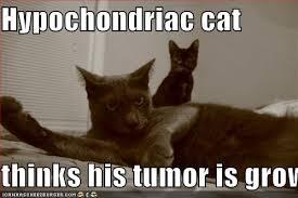 hypochonria