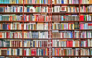 lotts-of-books